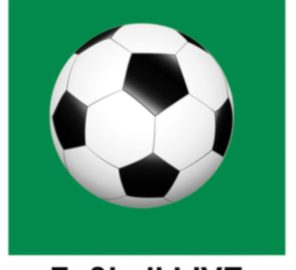 Das LANGE Pub und Beisl - LIVE Fußball WM 2014